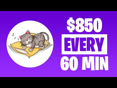 This Website Pays $850 Every 60 Minutes On AUTOPILOT! (Make Passive Income On Autopilot)